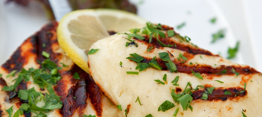 cyprus grilled halloumi cheese